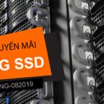Thế Giới Số khuyến mãi 30% dịch vụ SEO HOSTING SSD